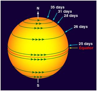 Промена на магнетните силови линии на Сонцето поради различна брзина на ротација на конвективната зона.