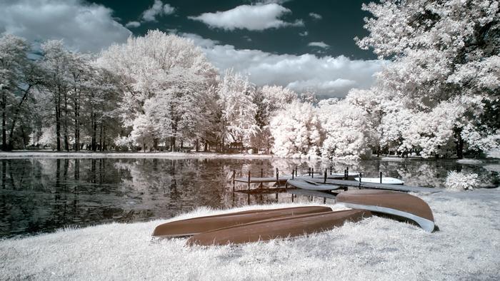 Авторски права: Горан Петров, САД