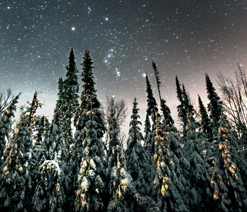 UT-Orion-with-snow-pines-Jan-3-2010
