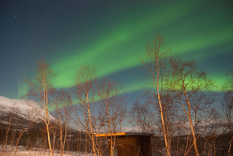 Зелени линии го сечат северното небо. Авторски права: Софија Спировска