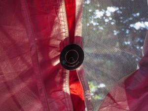Астро шатор. Заслуги: Марина Димовска