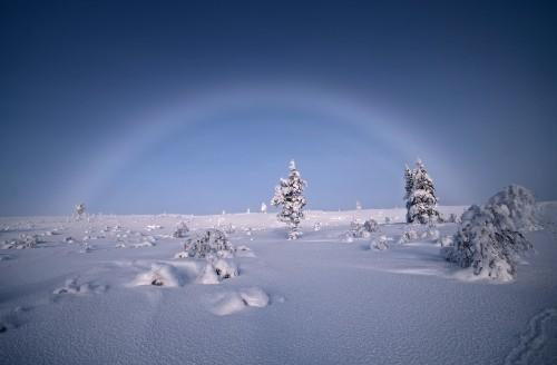 Лак во магла (Финска)